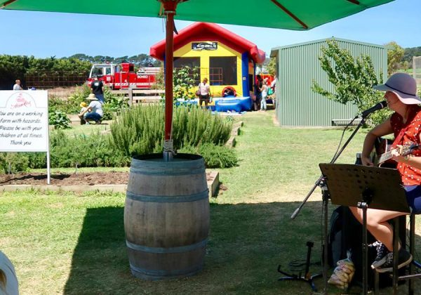 Hawkes Farm Open Days
